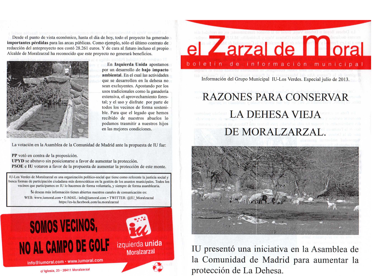 Zarzal especial dehesa julio 2013